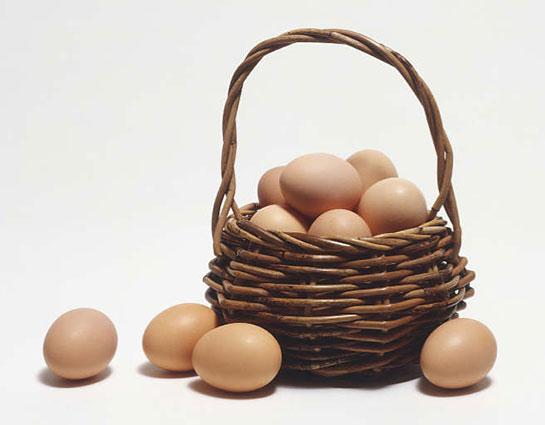 Image result for yumurta